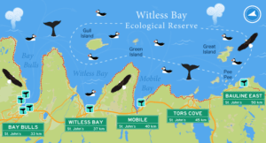 The Witless Bay Ecological Reserve Map
