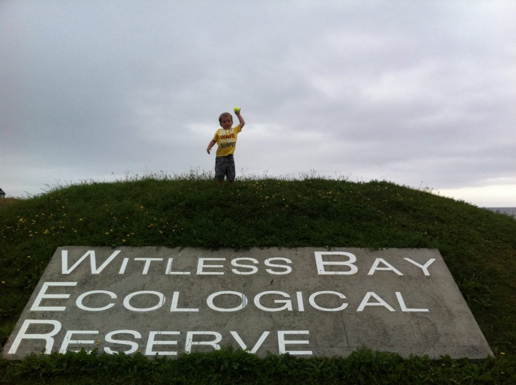 The Witless Bay Ecological Reserve