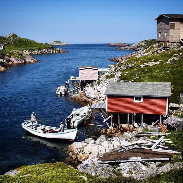 Fishing Stages on Little Fogo Islands