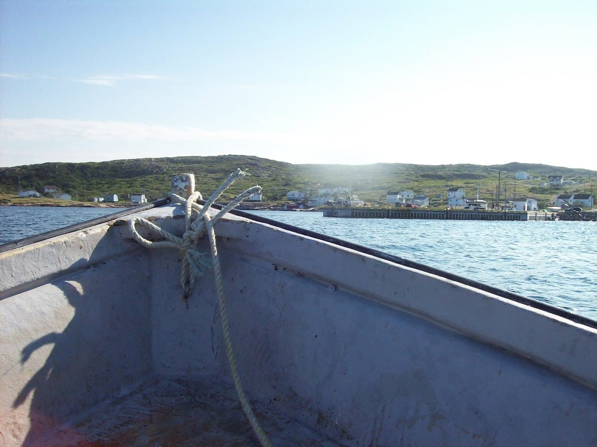 it's great to see the land from a differenet prespective sometimes.  The Food Fishery helps us do that.